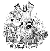 wildkritters